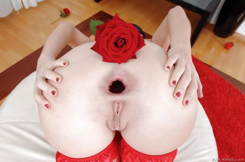 Gaped Rose