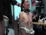 Leashed brunette blowjobs in public restaurant
