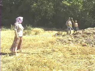 Village Granny Fucked In Field By Two Young Gay Farmers