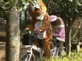 Japanese Student Ride Sexy Bicycle With large Bear