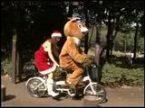 Japanese Teen Ridding Bicycle With Big Brown Bear