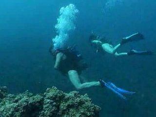 Scuba Divers Underwater Sex