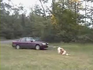 Blond Hitchhiker Gets  Fucked and Dumped In the Middle Of Nowhere