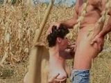 Mature Woman Fucked In Corn Field