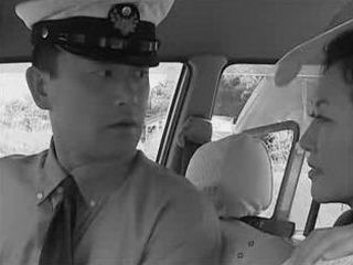 Womans Cab Driver Fantasy (MRBOB7777)
