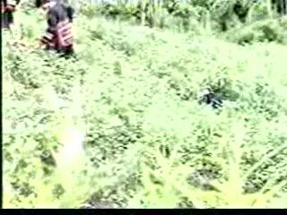 Thai Village Hardcore Porn 3