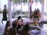 Party Near The Pool - Porn Movie