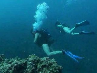 Scuba Divers Underwater Sex