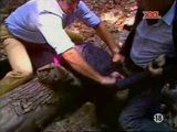 Horse Rider Girl  Fucked In Woods By Two Guys - Fuck Fantasy