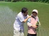 Japanese Mature Farmer and Fake Doctor Fuck in the Paddy Field