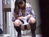 Hairy Pussy Japanese Sluts Pissing In Public Compilation